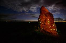 Bioluminescencia nuvens