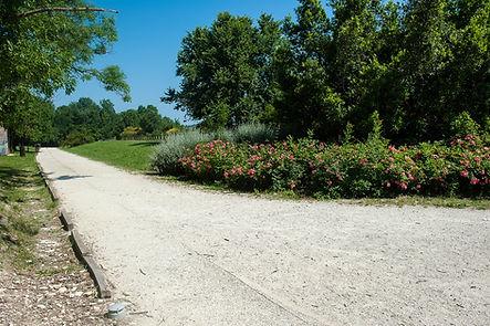 Sentiero all'interno del Campo Trincerato, oggi parco pubblico Cittadella di Ancona, per correre running feste compleanno bambini marche
