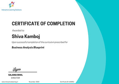 Turquoise Shades Professional Certificate.jpg