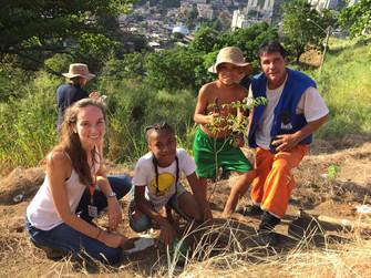 UFF, CLIN e SMARHS promovem plantio no Morro do Boa Vista