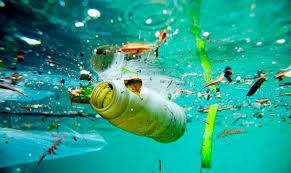 Plano de Ação Nacional para Combate ao Lixo no Mar