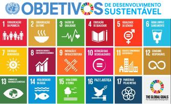 ONU procura jovens líderes para impulsionar implementação de objetivos globais