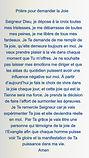 vignette_pape_Fran%C3%83%C2%A7ois_edited
