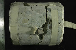 BFI _ Concrete Expert Witness _ Petrogra