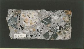 Concrete Petrographer - Bfi - Building Forensics International - Concrete Consultant - Concrete Petrographic Testing Analysis