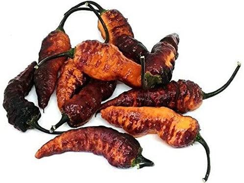 Black Panther Orange SUPER HOT Pepper Organic Seeds