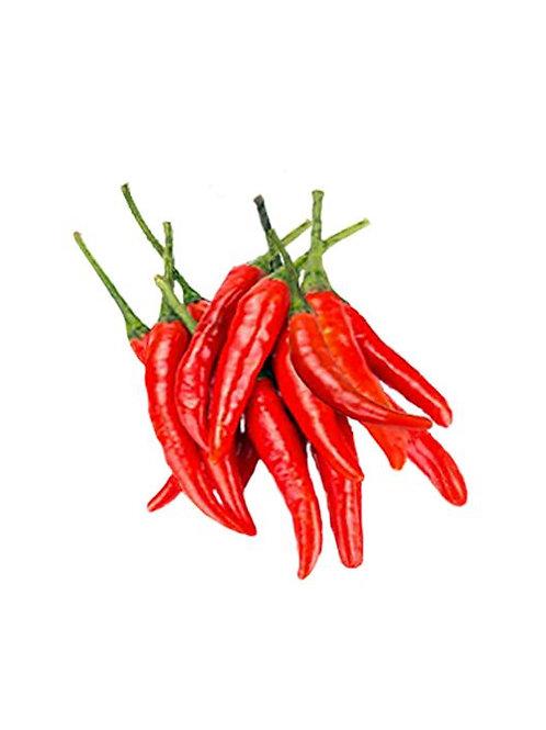 Malagueta HOT Pepper Organic Seed