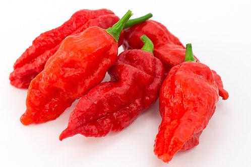 Bhut Jolokia Red Ghost SUPER HOT Pepper Organic Seeds
