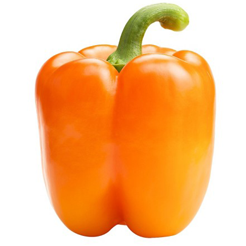 Organic Bell Pepper Seeds
