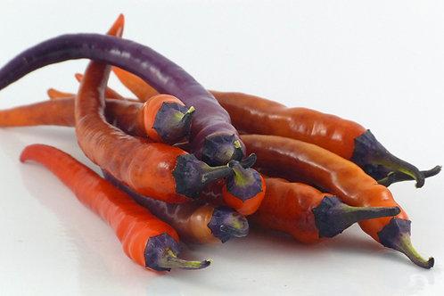 Buena Mulata Heirloom HOT Pepper Organic Seeds