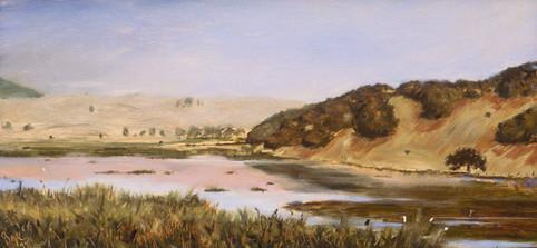 Marin Wetlands