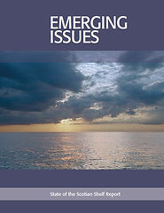 Emergingissues-report.JPG