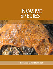 Invasive species-report.JPG