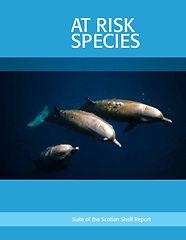 speciesatrisk-report.JPG