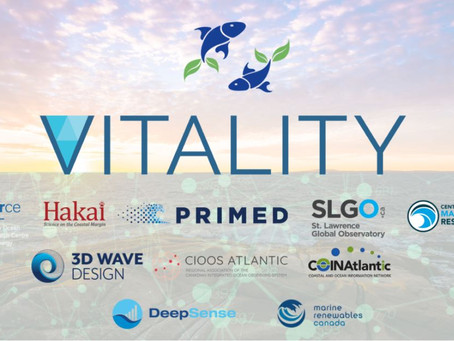 Vitality Project is launched!