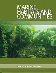 Marine habitats-report.JPG
