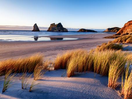 Upcoming Virtual Coastal and Ocean Events