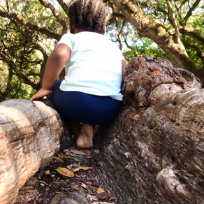 How to Pick the Best Parks to Explore with Kids: South Florida