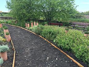 WI garden May 19.jpg