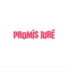 promis-juré-theunissen