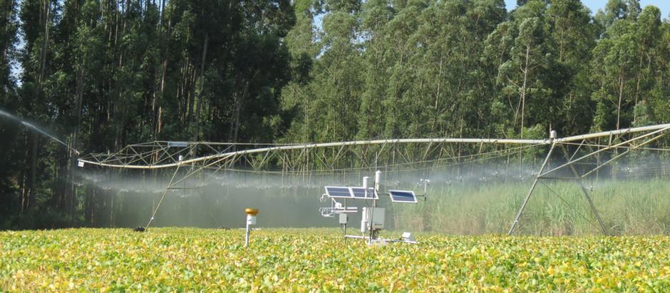 Pesquisa da ESALQ revela que lavoura irrigada pode obter ganho médio 20% maior