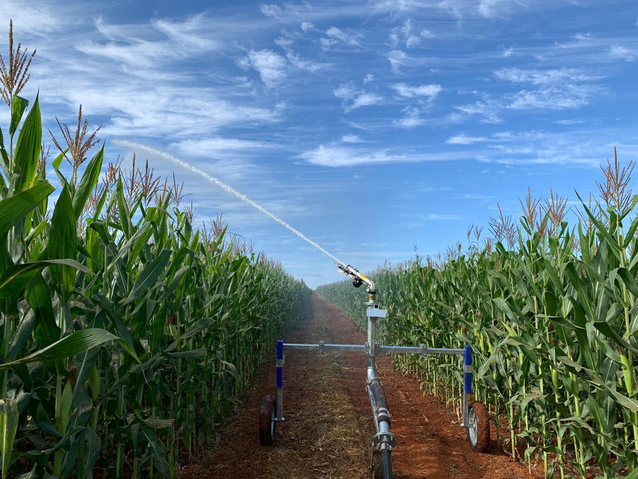 carretel de irrigacao irrigabas rolao en