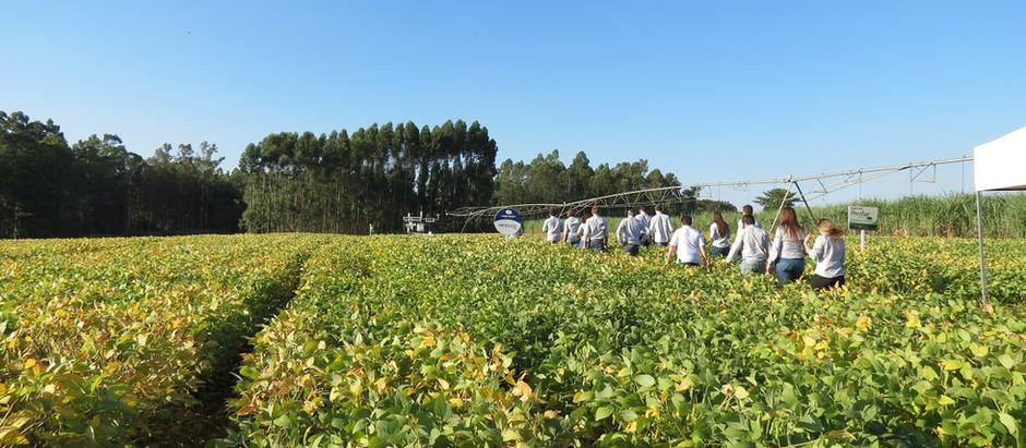 Área de Pivô Central Irrigabras na Esalq é foco de importantes pesquisas