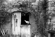 The Foulquié's Barn | Chez les Parents Foulquié