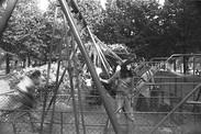 Swing   Balançoire