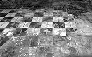 Flooring | Plancher