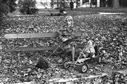 A Woman in the Park   Une Femme dans le Parc