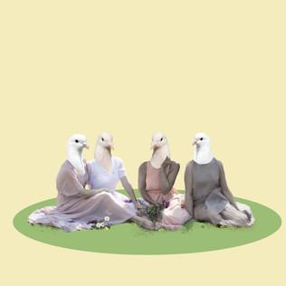 doves2.jpg