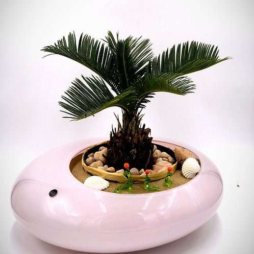 Soothing Relaxation Garden