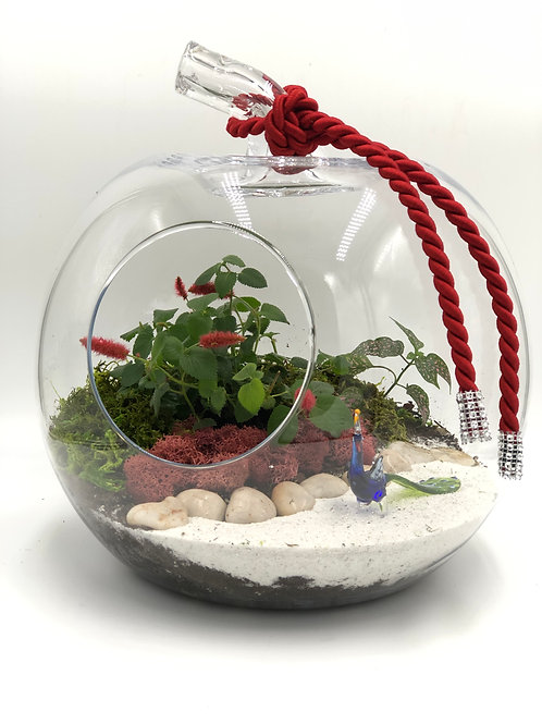 Royal Glass Terrarium