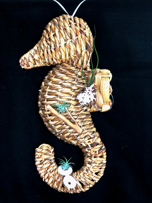 Seahorse with 3 Air Plants