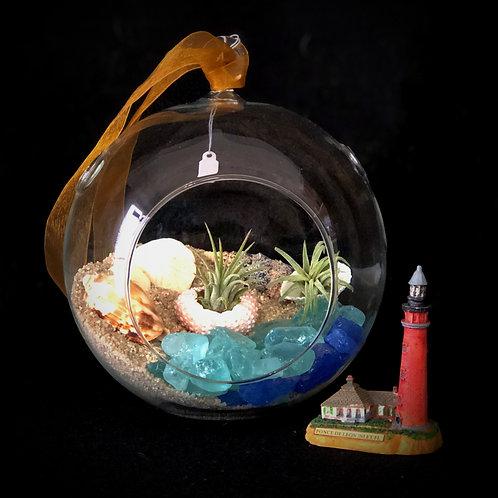 """Glass Air Plant Terrarium """"Florida Beach"""""""