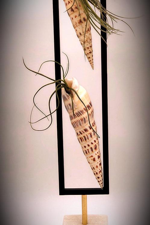 Seashell Ari Plants Sculpture