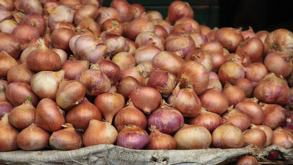 English cooking onions