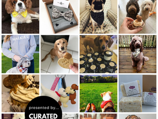 Curated Makers Dog Pop Up