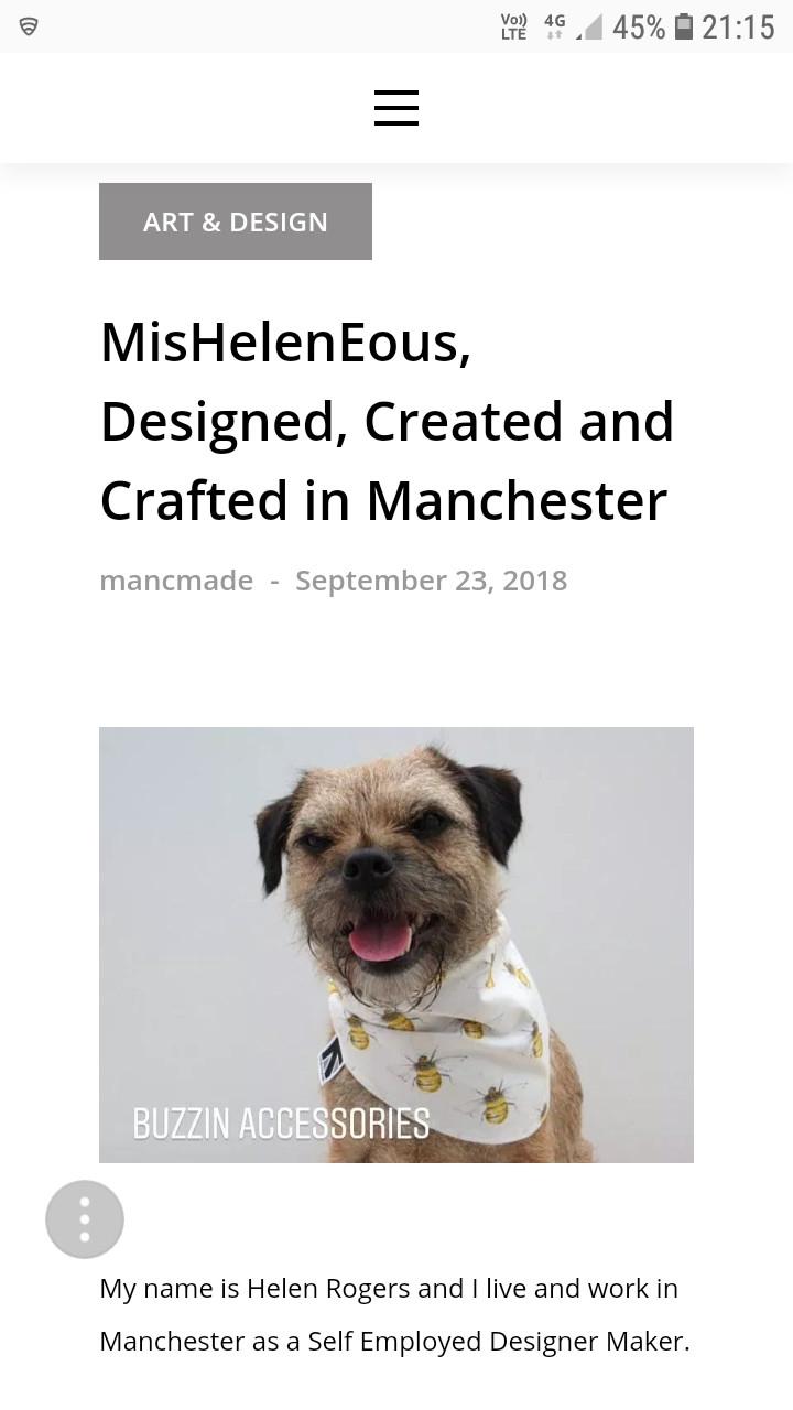 Border terrier wearing a bee print motif dog bandana