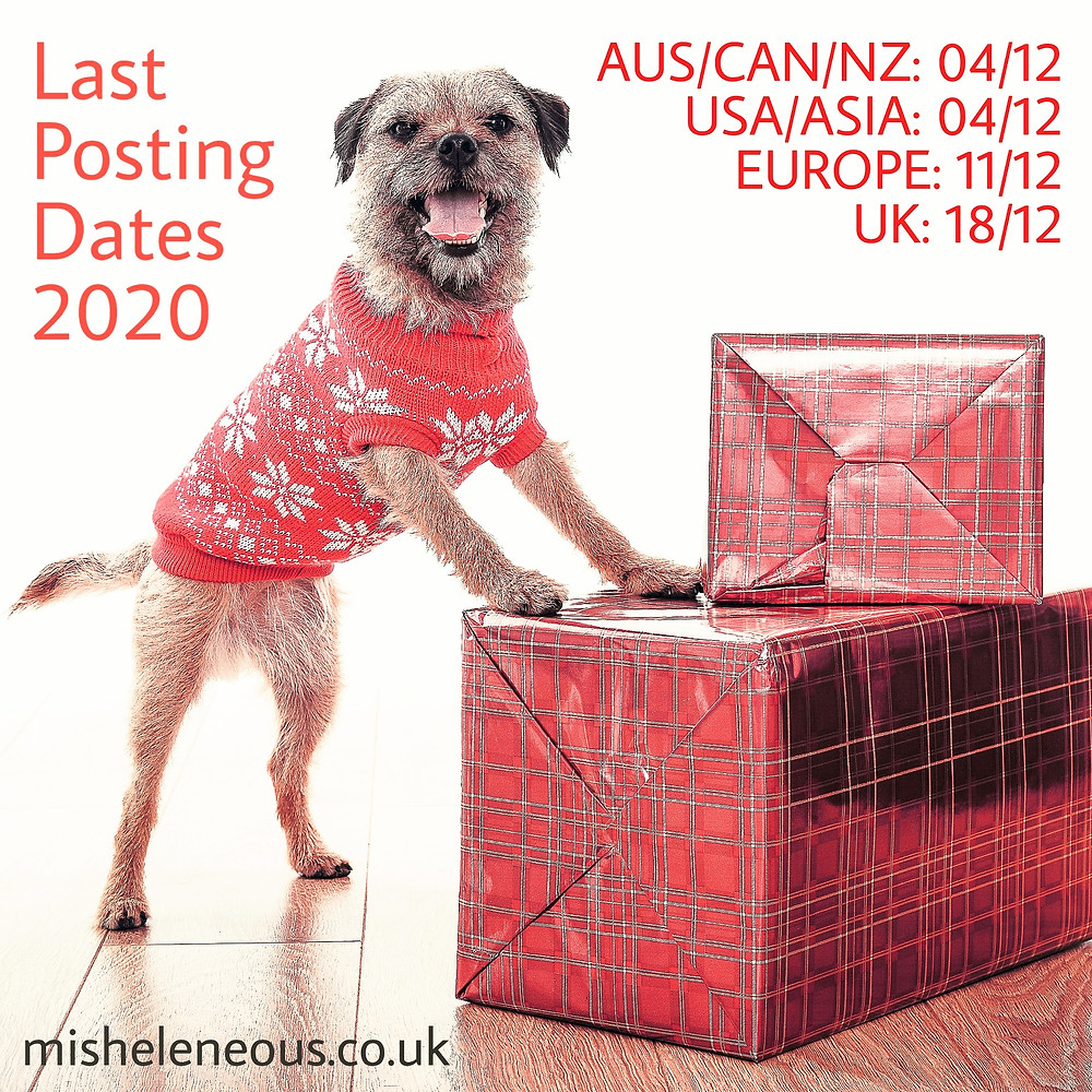 a border terrier dog wearing a festive jumper standing against Christmas presents