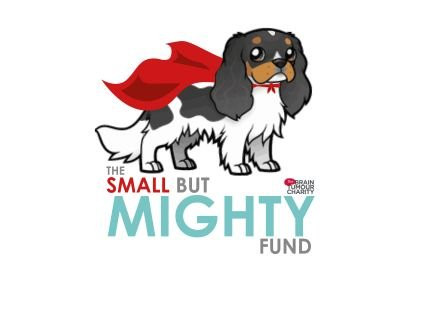 The Small But Mighty Fund