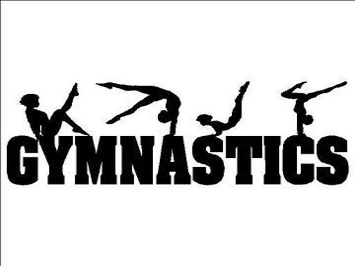 Half Term Gymnastics Camps!