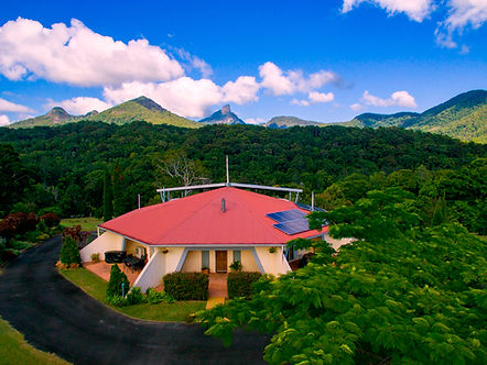 mt-warning-view.jpg