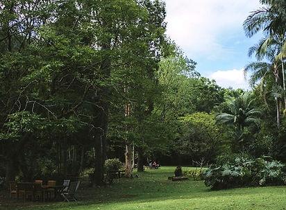 Rainforest Cafe cropt.jpg