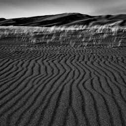 Dunes and Dwellings