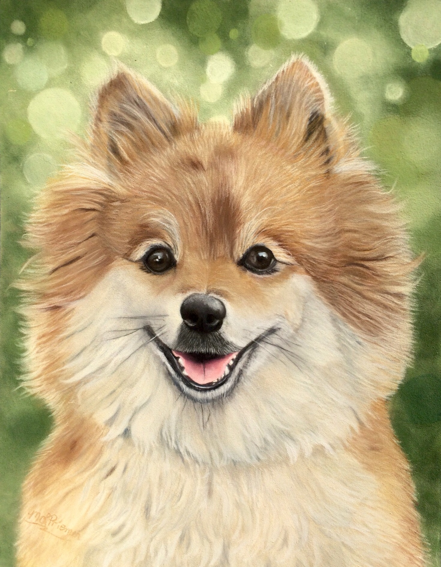 Noah : Pomeranian memorial
