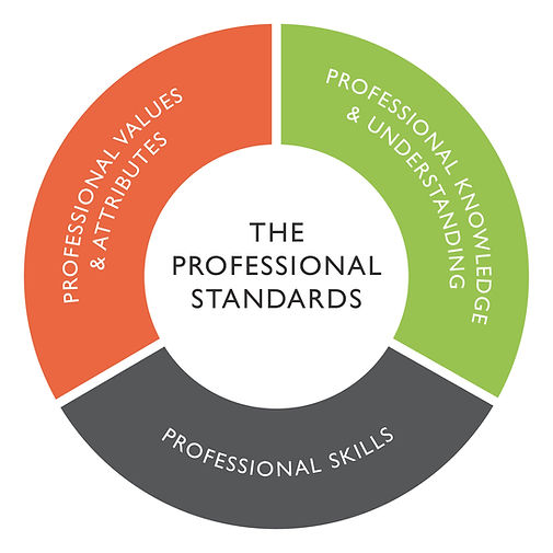 The Professional Standards-01.jpg