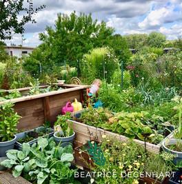 Warum ein Garten glücklich macht
