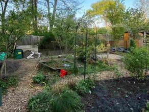Garteneinblicke in den nachhaltigen Projektgarten